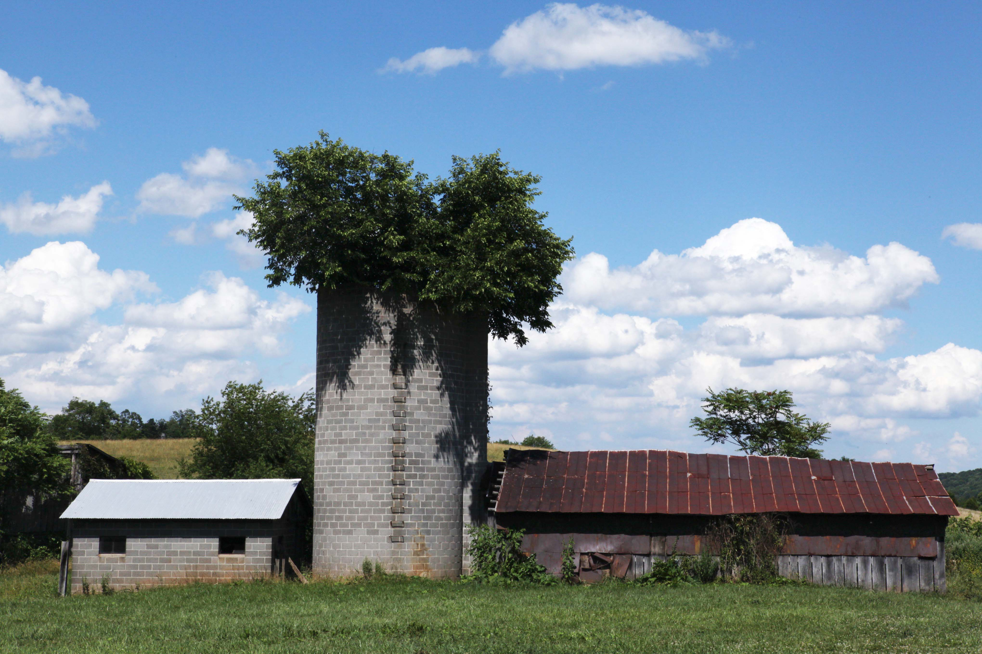 Dairy Parlor, Barn, and Silo